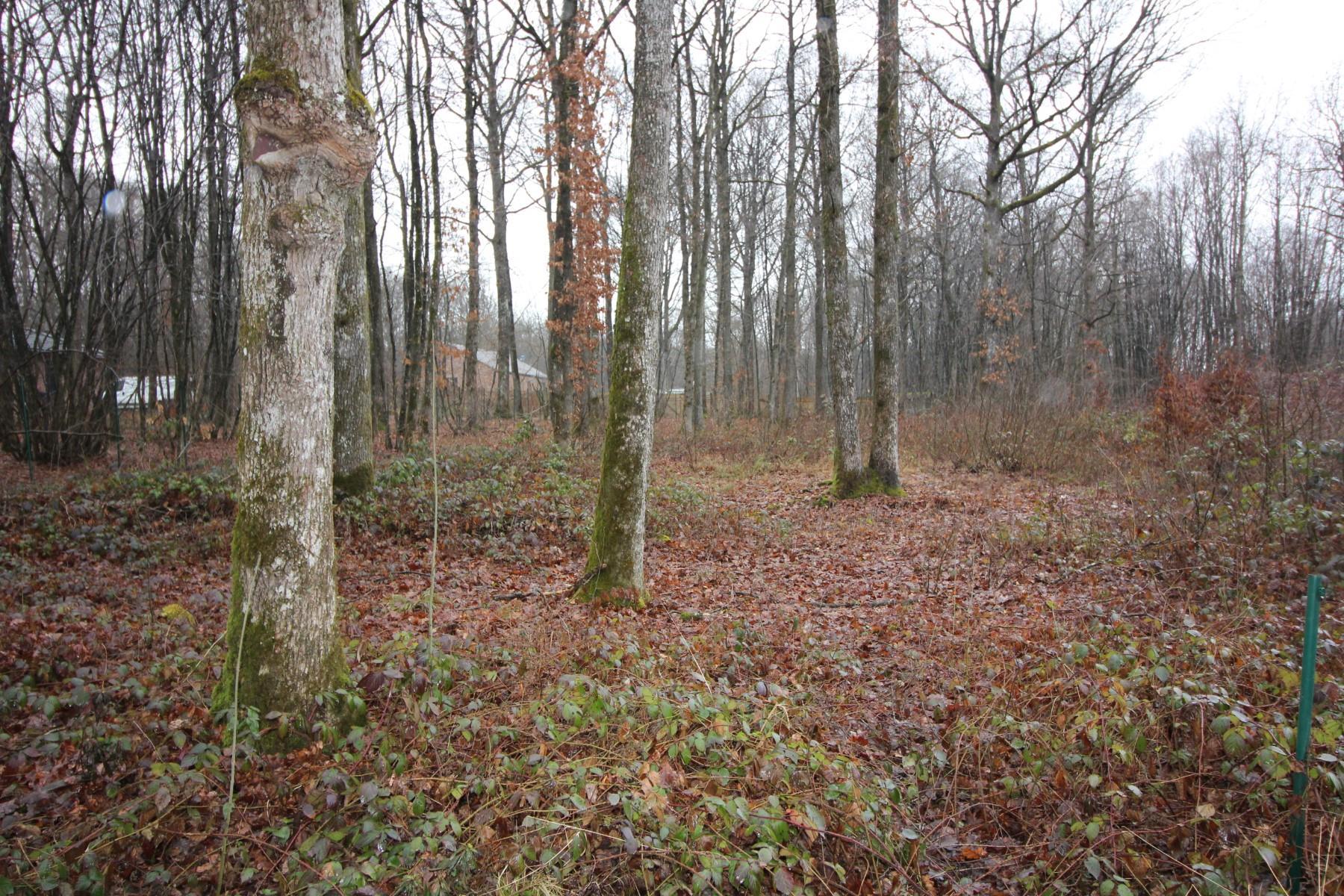 Terrain à bâtir - Philippeville - Roly - #3015406-3
